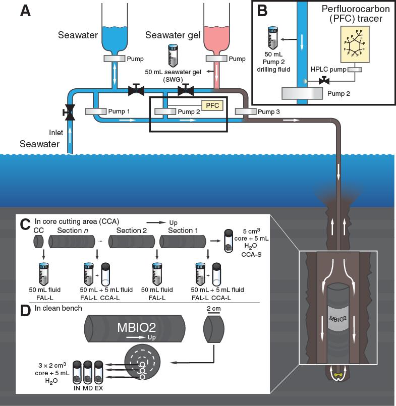 G1888 Ez Go Wiring Diagram - Wiring Diagram •